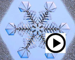 Growing Snowflakes - SnowCrystals.com | iScience Teacher | Scoop.it