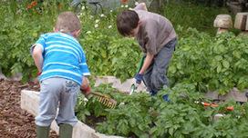 Organic Gardening: Helping Nature through Organic Gardening | Organic Gardening Blog | Scoop.it