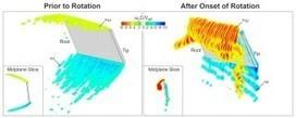 The Secrets of a Bug's Flight | Science | Scoop.it