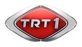 TRT 1 Canlı izle - Canlı TV izle | TV izle | Scoop.it