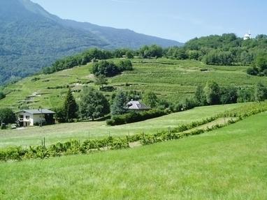 degustateurs.com: Les Ardoisières, paradis en Allobrogie... | Vins et schistes | Scoop.it