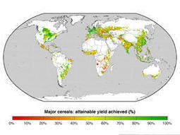 Hope of greater global food output, less environmental impact of agriculture | Zero Footprint | Scoop.it