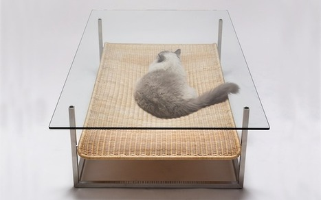 Hammock Table is the Perfect Resting Place for Your Cat | Le It e Amo ✪ | Scoop.it