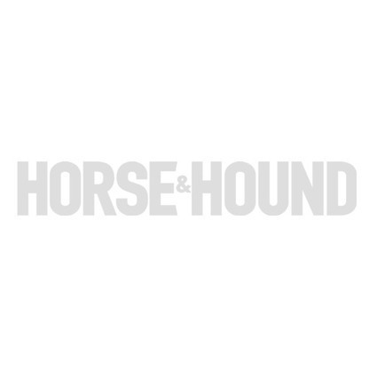 10 injuries your horse might encounter out hunting — and how to treat them - Horse & Hound | EQUINE SCIENCE | Scoop.it