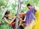 Eco-feminism drive in India | Eco-feminism & the Ecology of Fear | Scoop.it