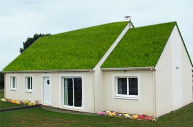 ECOLOGIE : de plus en plus de toits végétalisés | bio | Scoop.it