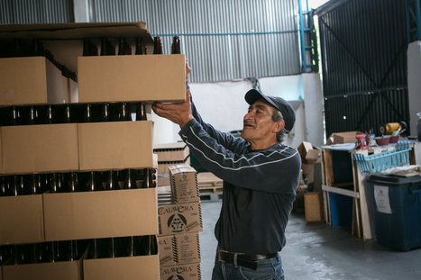 Mexican micro-brewers step out of the shadow of the country's beer giants | International Beer News | Scoop.it