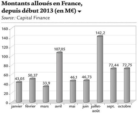 Le capital-risque tricolore se maintient à un niveau élevé | Eefficiency | Entrepreneuriat et Création d'Entreprise | Scoop.it