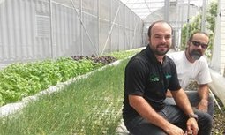 Puerto Rico - Revving up the farming economy with aquaponics | Aquaponics in Action | Scoop.it