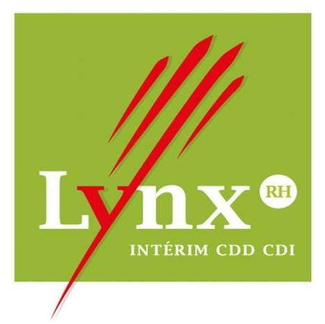 Formules accessibles pour la franchise Lynx RH | Actualité de la Franchise | Scoop.it