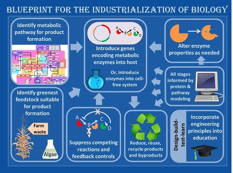 Industrial chemistry, prepare to be biohacked* | Plant Science Today | Plant Biology Teaching Resources (Higher Education) | Scoop.it