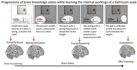 Teaching Science to the Brain: Scientists Discover How the Brain Learns the Way Things Work-Carnegie Mellon News - Carnegie Mellon University   Learning & Mind & Brain   Scoop.it