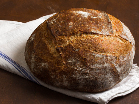 Everything You Need to Know to Start Baking Awesome Bread | Le Marche and Food | Scoop.it