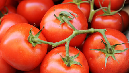 Crazy way to grow a bumper tomato crop | sustainablehomes | Scoop.it