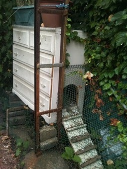 Turn a chest of drawers into a chicken coop   Upcycled Garden Style   Scoop.it