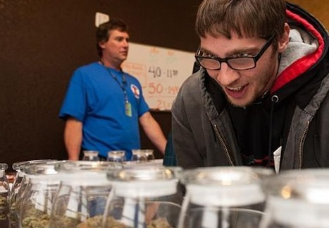Why marijuana is the next great American industry | Drugs, Society, Human Rights & Justice | Scoop.it