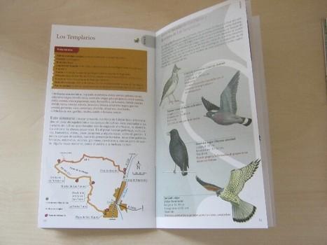 Diez rutas ornitológicas para descubrir Ribagorza y Sobrarbe | Vallée d'Aure - Pyrénées | Scoop.it