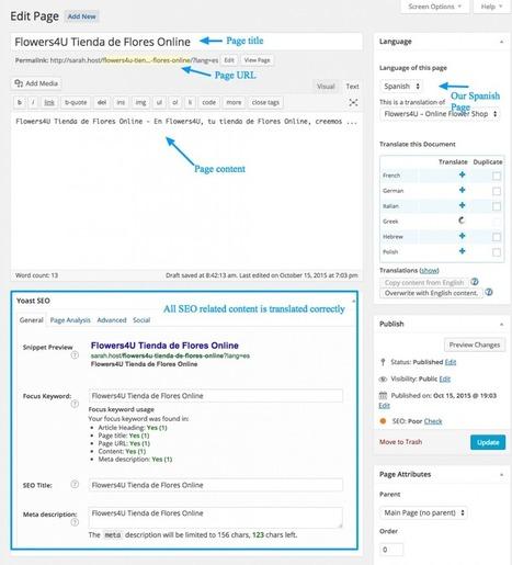 SEO multilingüe con Yoast, WPML y traducción profesional | Web Content Enjoyneering | Scoop.it