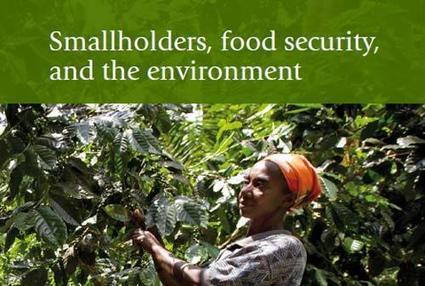 Investing in small-scale farmers can help lift over 1 billion people out of poverty | humanité | Scoop.it
