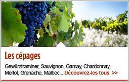 La quête du rubis pafait   Le Vin et + encore   Scoop.it