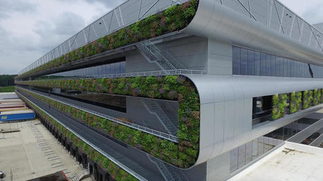 Nike's Ultra-Sustainable Distribution Center Is So Clean It Uses Sheep Instead Of Lawn Mowers | Real Estate Plus+ Daily News | Scoop.it
