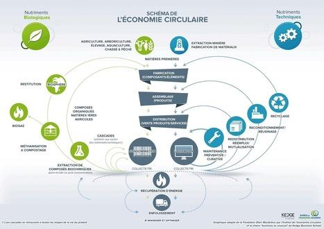 L'économie circulaire : définition, schéma | Idées responsables à suivre & tendances de société | Scoop.it
