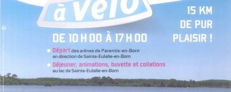 Les Grands Lacs à vélo édition2015   Vacances dans les Landes   Scoop.it