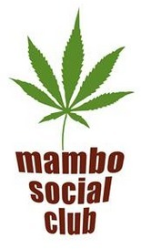 Oprichter Hasseltse cannabisclub verdedigt zijn concept | Drugsbeleid | Scoop.it