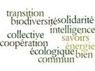 Vœux pour une année 2015 de transition écologique | Transitions | Scoop.it