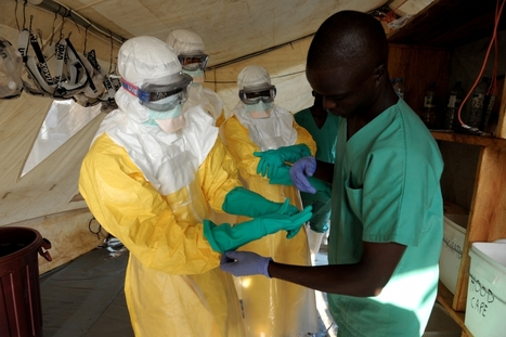 Ebola Outbreak Will Cause Food Crisis in West Africa, FAO Warns - International Business Times UK | NGOs in Human Rights, Peace and Development | Scoop.it