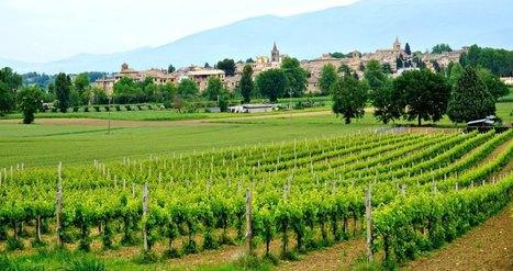 #Wine #Tasting in #Umbria, #Italy | Umbria & Italy | Scoop.it