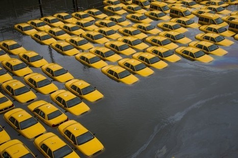 """Big Insurance Companies Are Warning The U.S. To Prepare For Climate Change (""""this applies to the rest of the world"""") 
