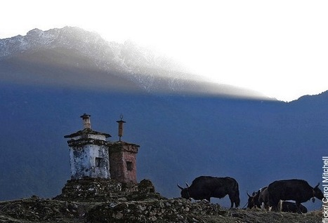 Himalayan Hideouts: West Sikkim - | Food & Travel | Scoop.it