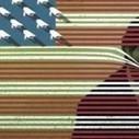 Pulitzer: um tapa na cara do Estado de vigilância | in.fluxo | Scoop.it