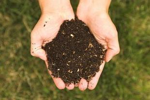 Un nuevo abono adsorbe los fungicidas y regula su dispersión en el medio ambiente | MALEZAS COMO ABONO | Scoop.it