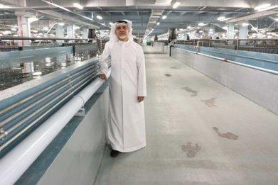 UAE is home to the world's largest caviar factory | 3A : Actualités Aquacoles & Aquaponiques | Scoop.it