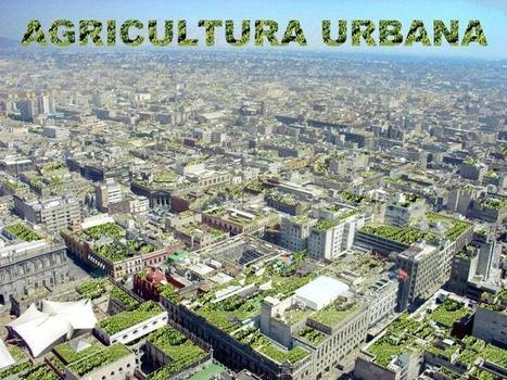 Agricultura Urbana   Circula México   Aigner   Scoop.it