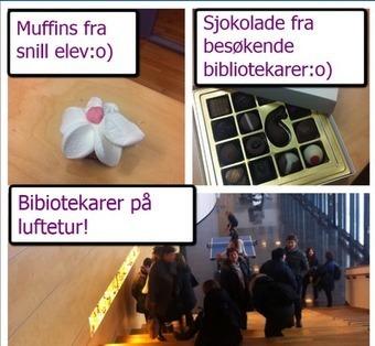 Rysjedamene og livet på skolebiblioteket: Besøk, godsaker og flere baller...   Skolebibliotek   Scoop.it