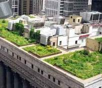 Sustainable Ecosystems: Chicago's Multi-Stakeholder Commitment Boosting Innovation and Entrepreneurship | Sustainable Brands | Smart Sustainable Cities | Scoop.it