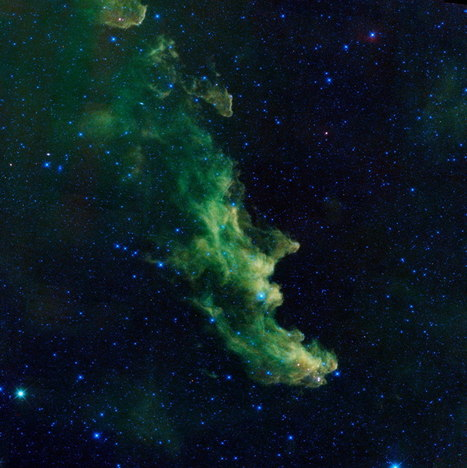 Head Nebula Brews Up Baby Stars | The Blog's Revue by OlivierSC | Scoop.it