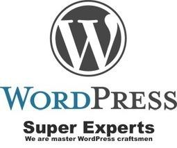 WordPress Development and HTML5 | Illustrator | Scoop.it