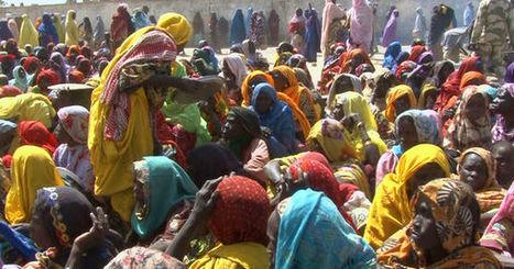 Boko Haram, comprendre les origines du mal   ifre   Scoop.it