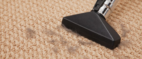 Houston Carpet Cleaning   BMF Carpet Cleaning   Scoop.it