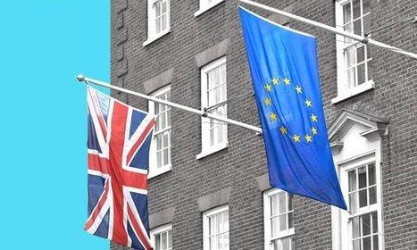WTO head says leaving EU would cost UK consumers £9bn a year | Macroeconomics: UK economy Pre-U Economics | Scoop.it