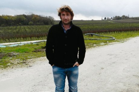 Vignobles Raymond : le vin bio au sommet | Bordeaux wines for everyone | Scoop.it
