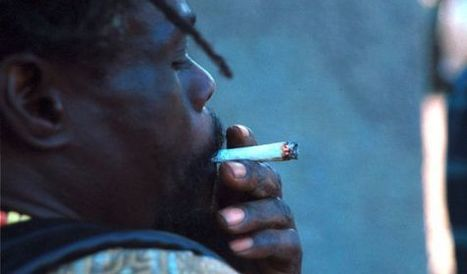 El Caribe se abre al debate sobre la despenalización de la marihuana | thc barcelona | Scoop.it