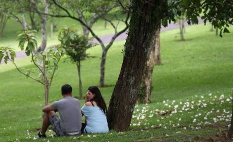 el 12% de adolescentes recibe información sexual directamente de sus padres   Cuidando...   Scoop.it