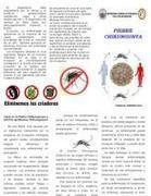 TRIPTICO sobre CHIKUNGUNYA | Salud Publica | Scoop.it
