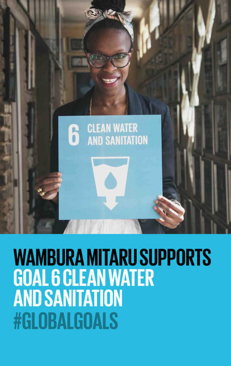 Goal 6: Clean Water & Sanitation | The Global Goals | Curtin Global Challenges Teaching Resources | Scoop.it