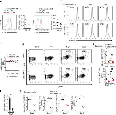 EBI2 augments Tfh cell fate by promoting interaction with IL-2-quenching dendritic cells : Nature : Nature Publishing Group | immunology | Scoop.it